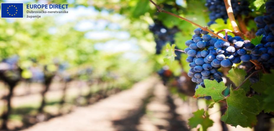 Poljoprivreda: Komisija donijela izvanredne mjere potpore za sektore vina, voća i povrća